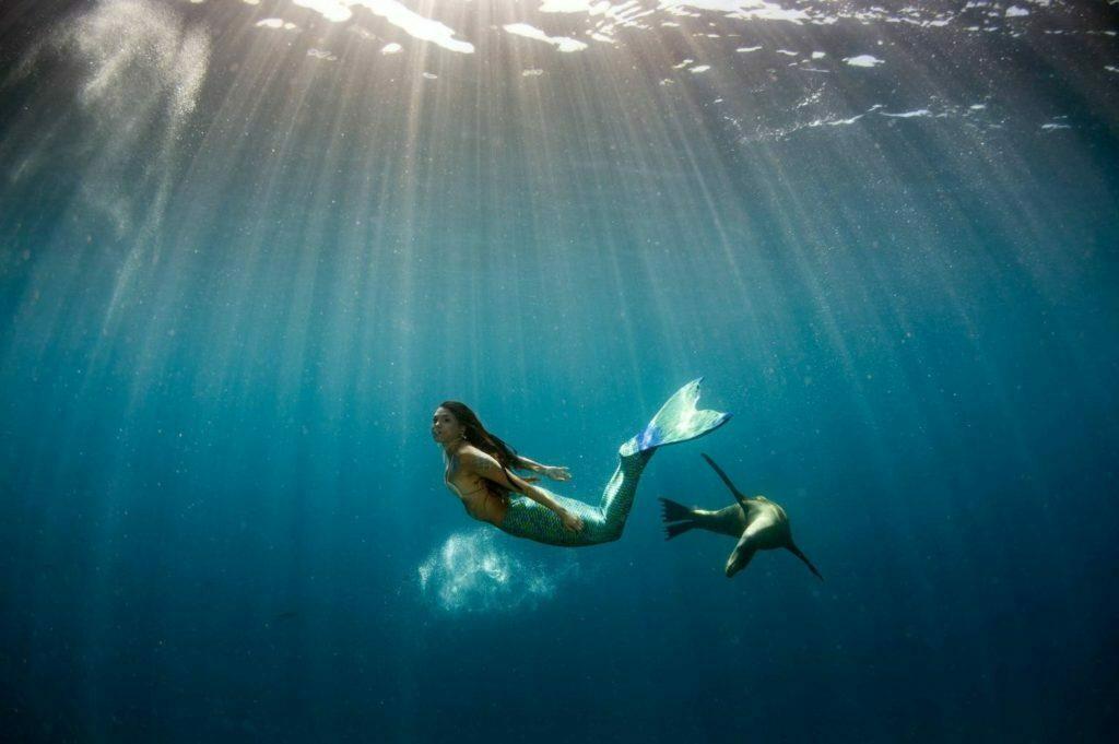 sirene nageant sous l'eau