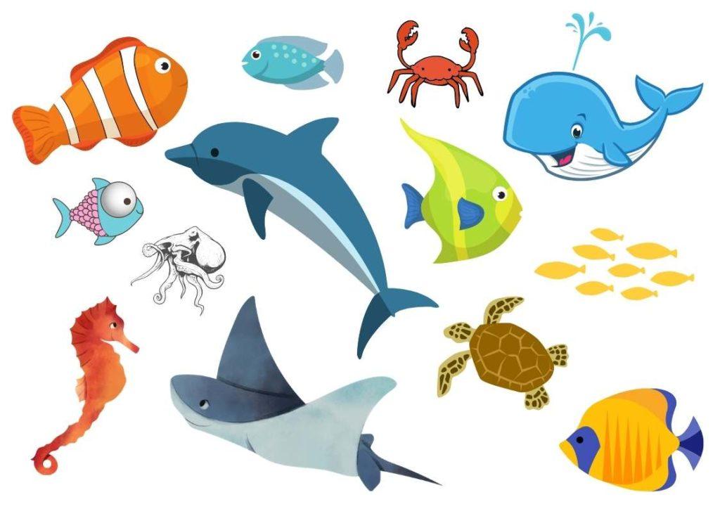 dessin des animaux aquatiques